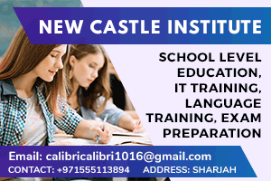 New Castle Institute LLC