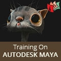 Exclusive Classroom Training On Autodesk Maya.
