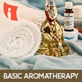 Sessions On Basic Aromatherapy