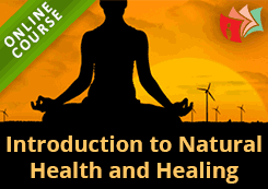 Introduction To Natural Health And Healing