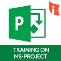 Online Training On MS-Project